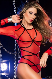 Tempting See Through  Teddy with Long Sleeves & Straps