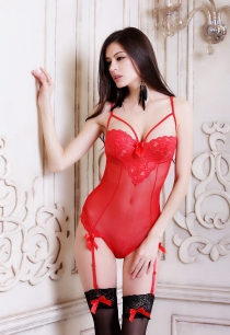 Sexy Sheer Red Teddy With Lace Sweetheart Bust, Hook & Eye Back Closure and Cute Bows Garters