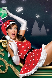 Sexy Christmas dress,20020