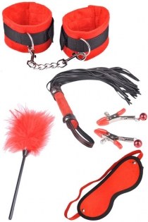 Red BDSM Toys Including Feather Tickler, Mask, Whip, Nipple Clamps, and Handcuffs