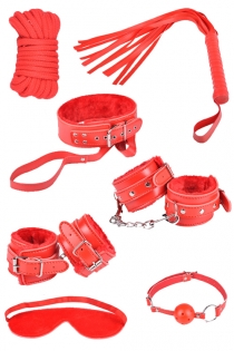 Mouth Gag, Cat Whip, Rope, Choker, Adjustable Hand Cuffs. Pink BDSM Kit