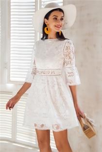 Hollow out lace dress women Button half sleeve streetwear white dress Spring 2018 causal short dress vestidos robe femme