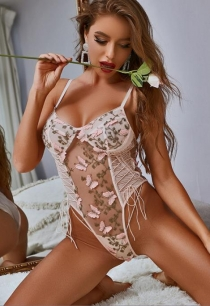 Pink lace butterfly embroidered one-piece teddy lingerie